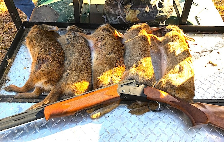 The 20 gauge shotgun is a popular choice for small game hunters and sports shooters