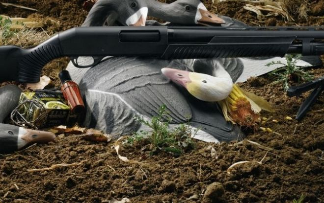 Stoeger P350 Review - Featured Image